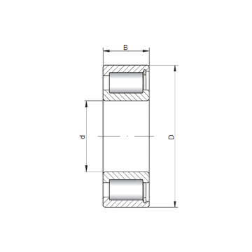 SL183064 ISO Cylindrical Roller Bearings
