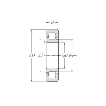 NJ203 CYSD Cylindrical Roller Bearings