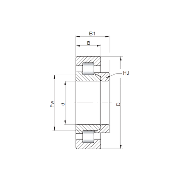 NH2204 E CX Cylindrical Roller Bearings